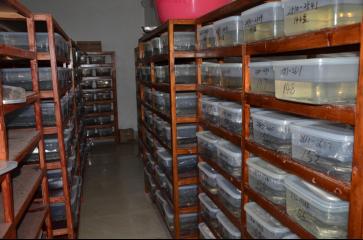 长沙工作站文物科技保护工作情况596.png