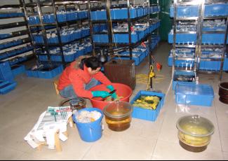 长沙工作站文物科技保护工作情况678.png